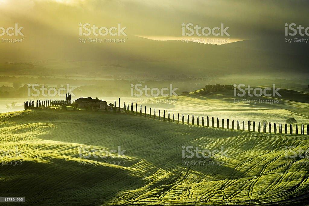 Landscape of San Quirico d'Orcia at sunrise stock photo