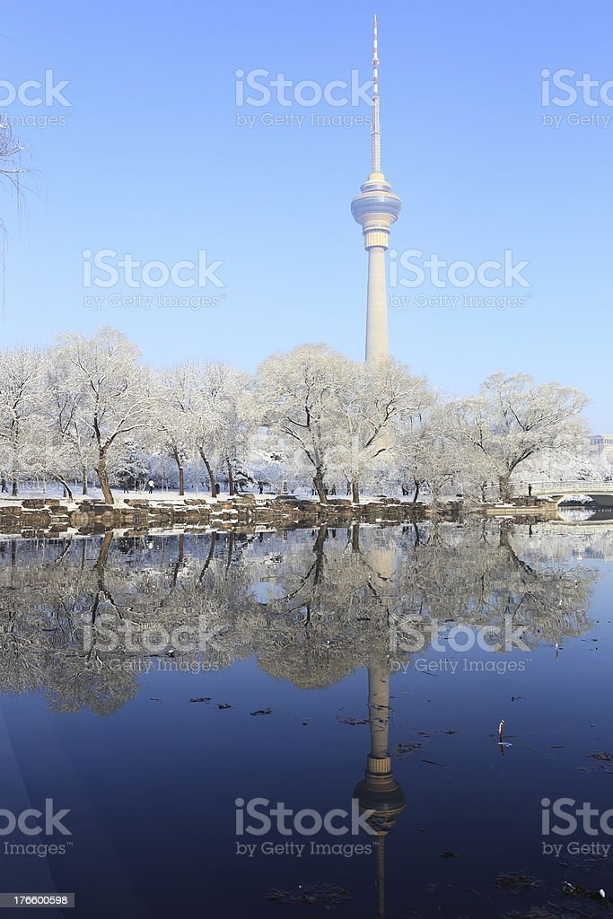 landscape of snow royalty-free stock photo