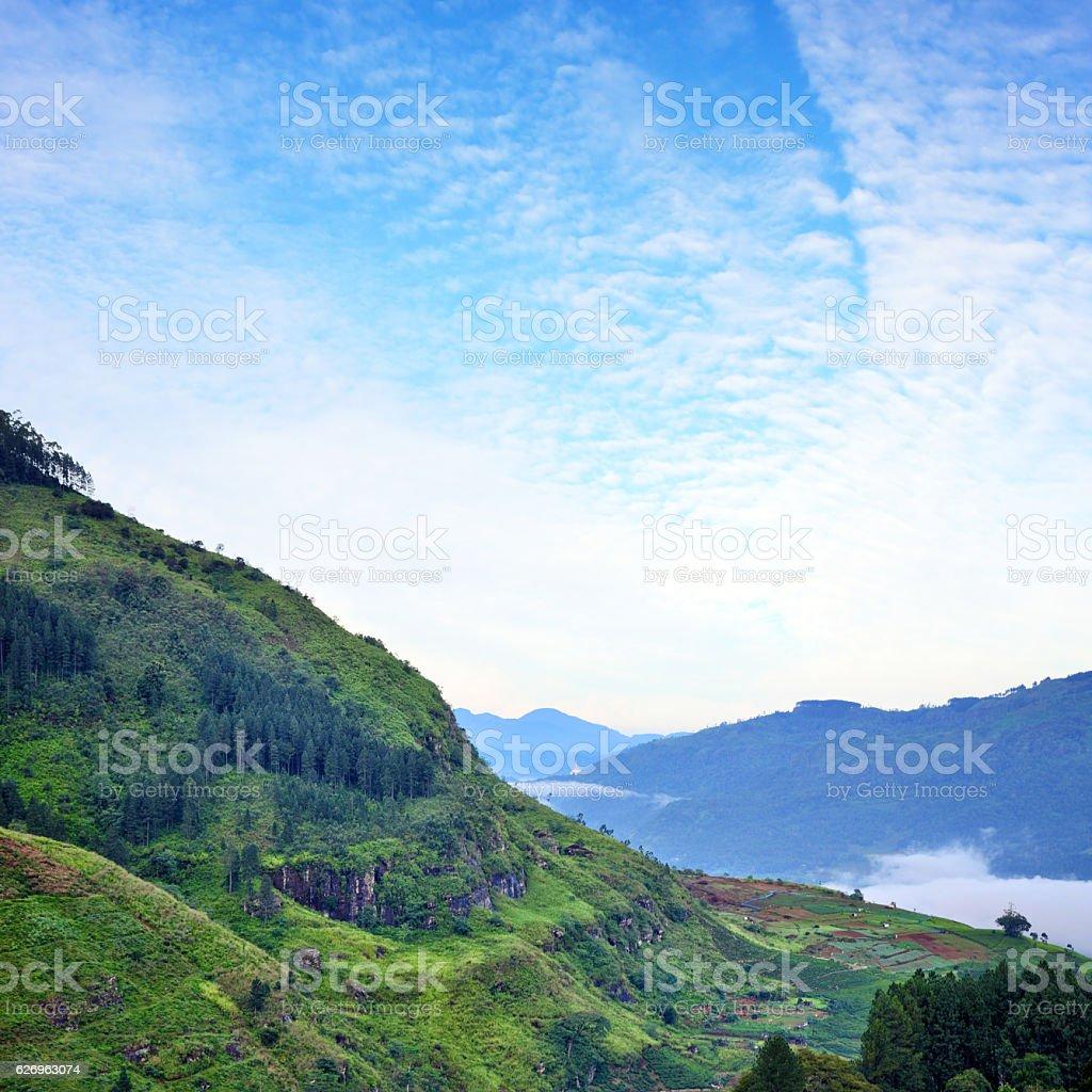 Landscape of Sri Lanka stock photo