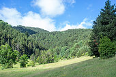 Landscape of the Pyrenees mountains
