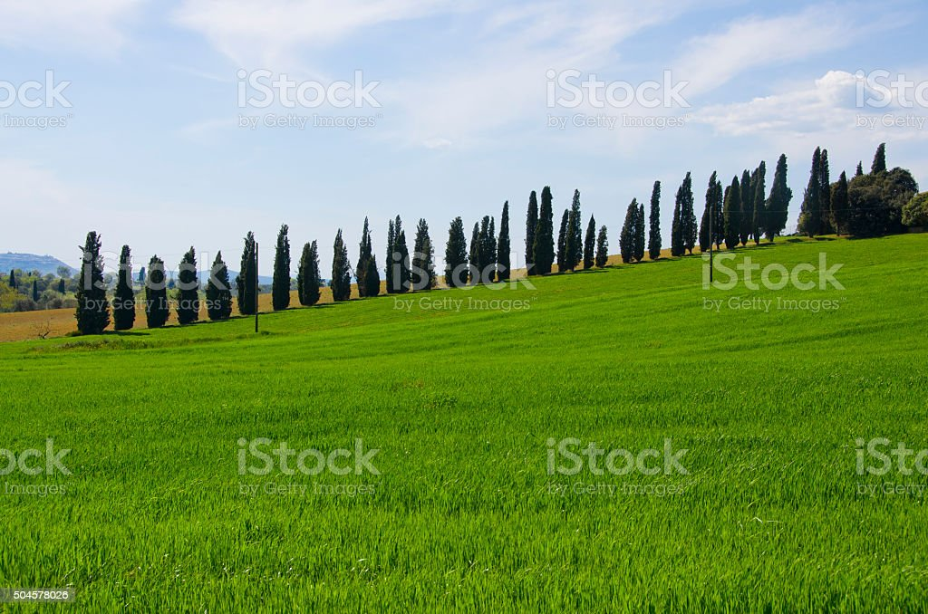 Landscape of the Val d'Orcia stock photo