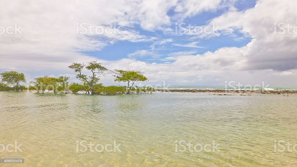 Landscape of thr North of Brazil stock photo