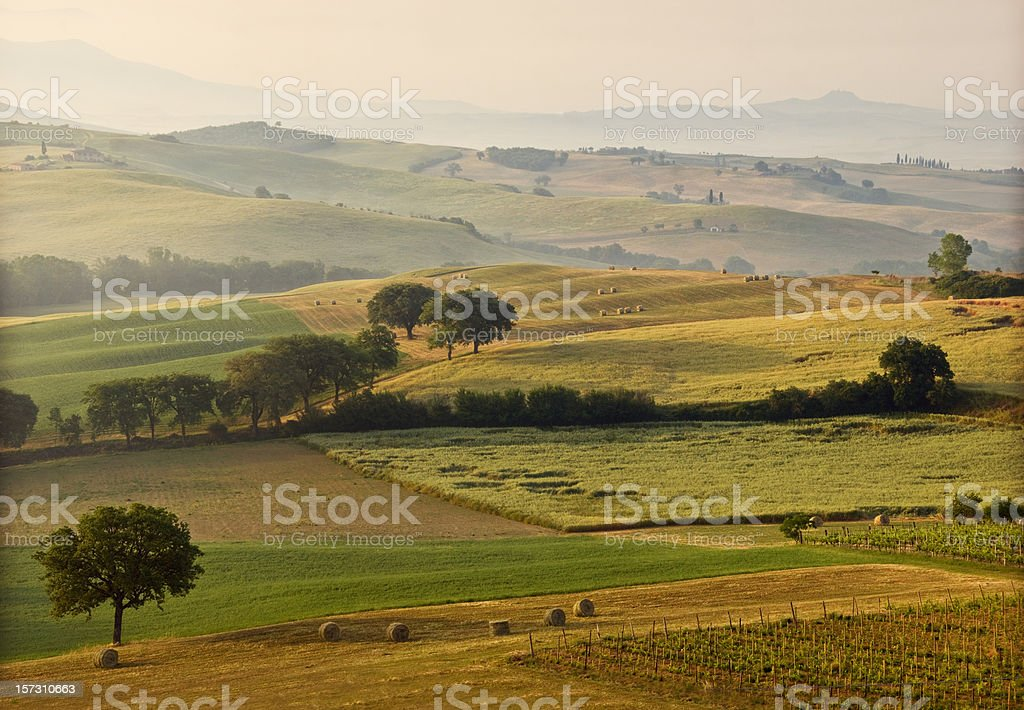 Landscape of Tuscan countryside stock photo