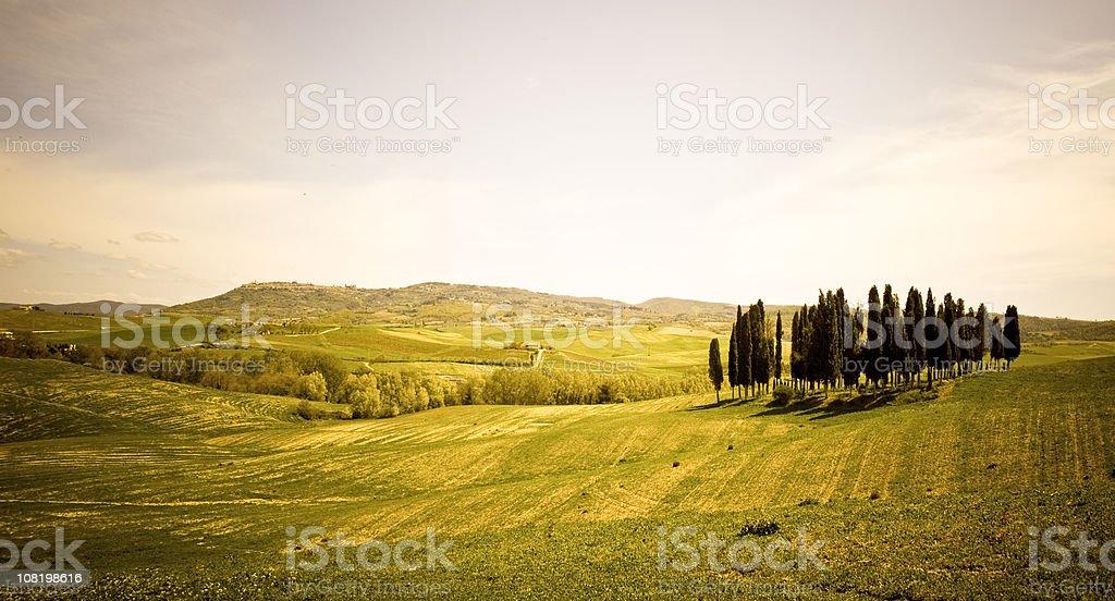 Landscape of Tuscany, Italy stock photo