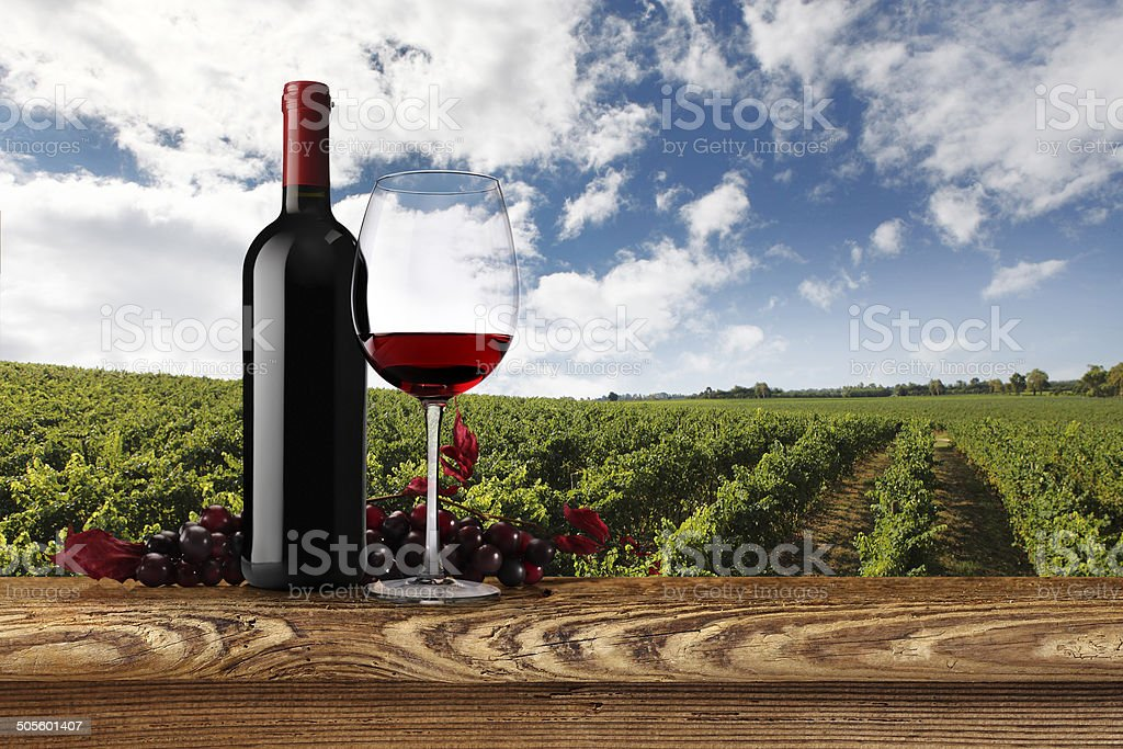 landscape of vineyards with bottle glass of wine and grapes royalty-free stock photo