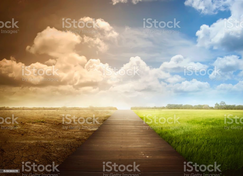 Landscape of wooden pathway with the changing environment stock photo