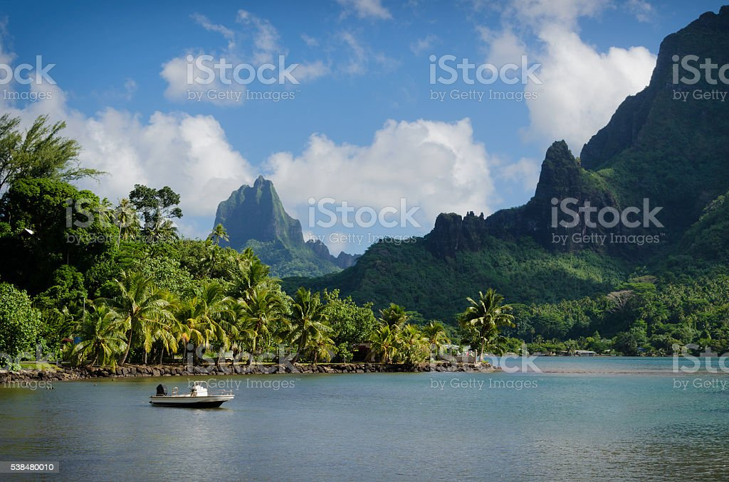 Landscape on green Moorea stock photo