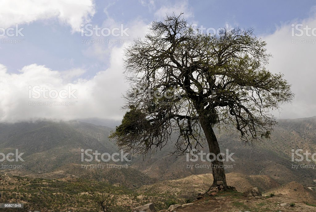 Landscape on road from Asmara to Massawa, Eritrea stock photo