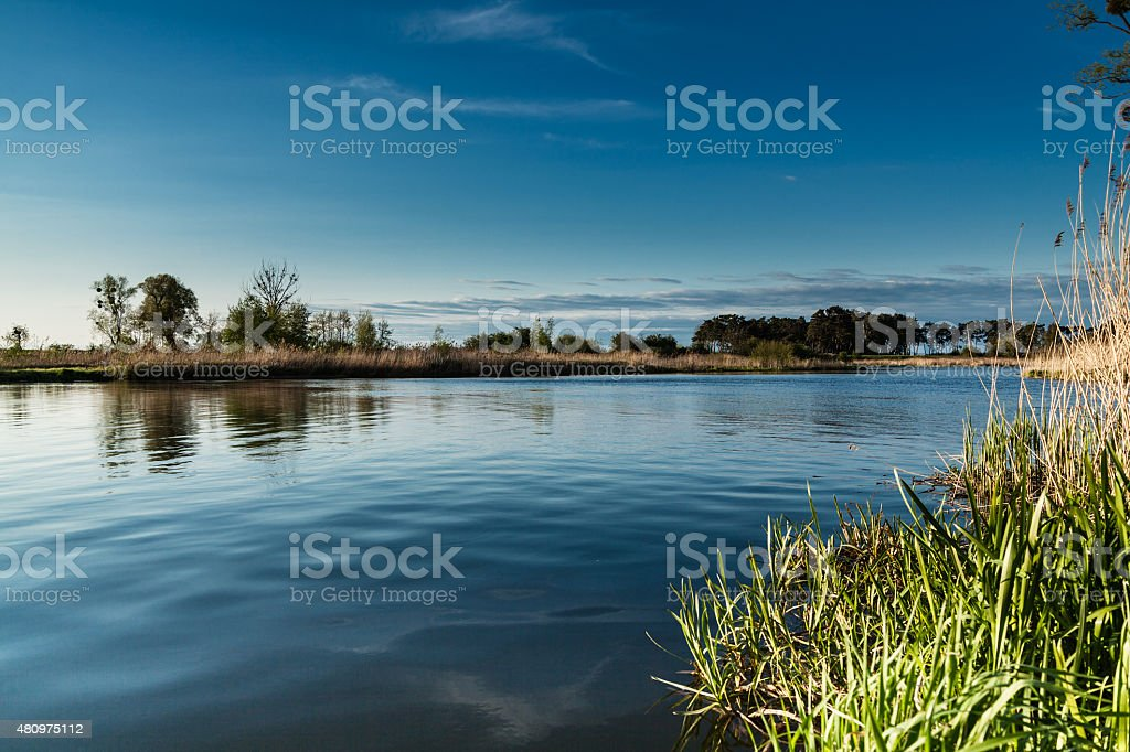 Landscape on the river Nogat, Poland stock photo