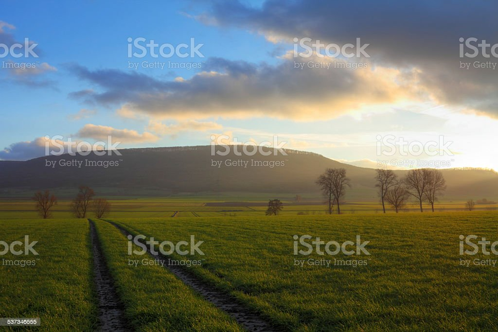 Landscape panorama in the late afternoon. stock photo