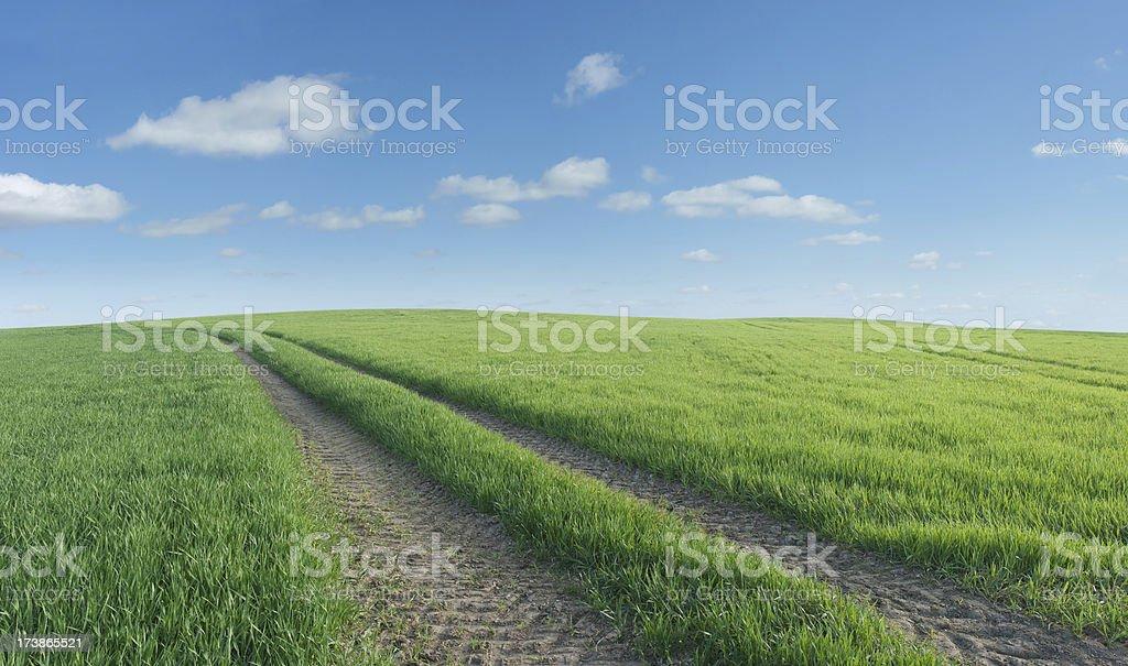 Landscape Panorama (Supersize) royalty-free stock photo