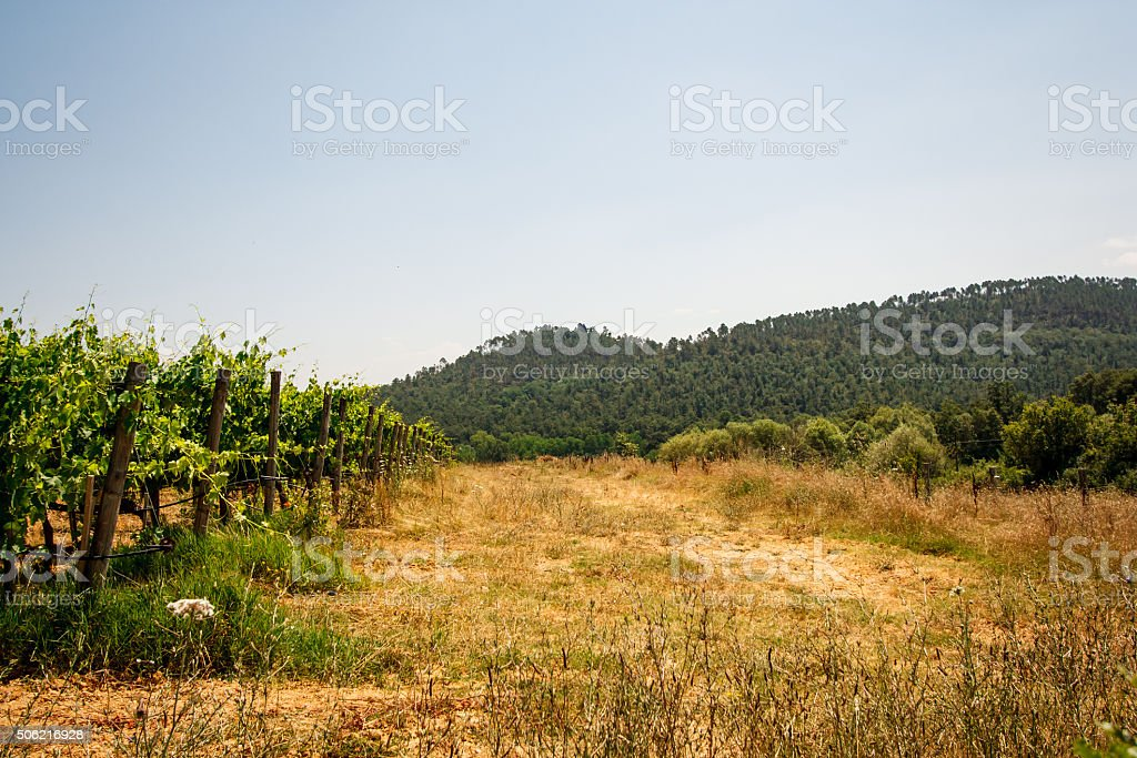 Landscape photo from San Galgan stock photo