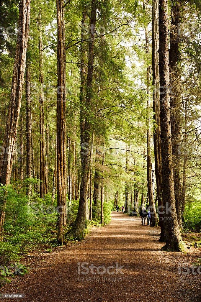 Landscape photograph of Sitka, Alaska  stock photo