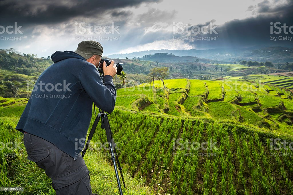 Landscape photographer taking photos of ricefield stock photo