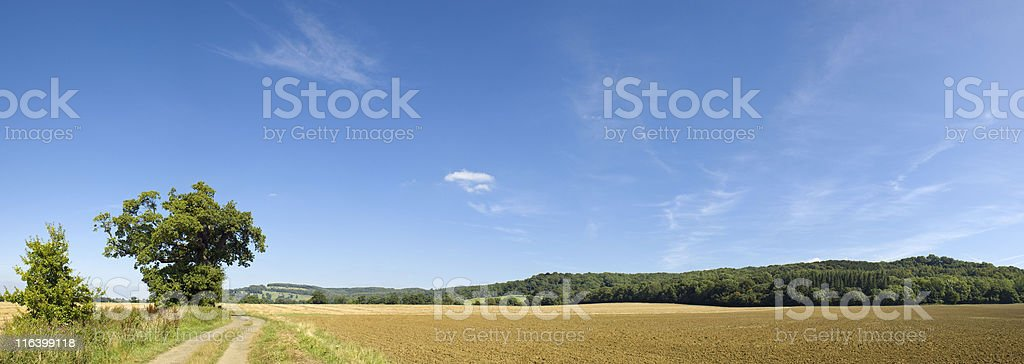 Landscape. royalty-free stock photo
