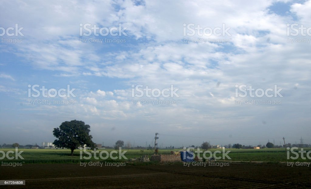 landscape stock photo