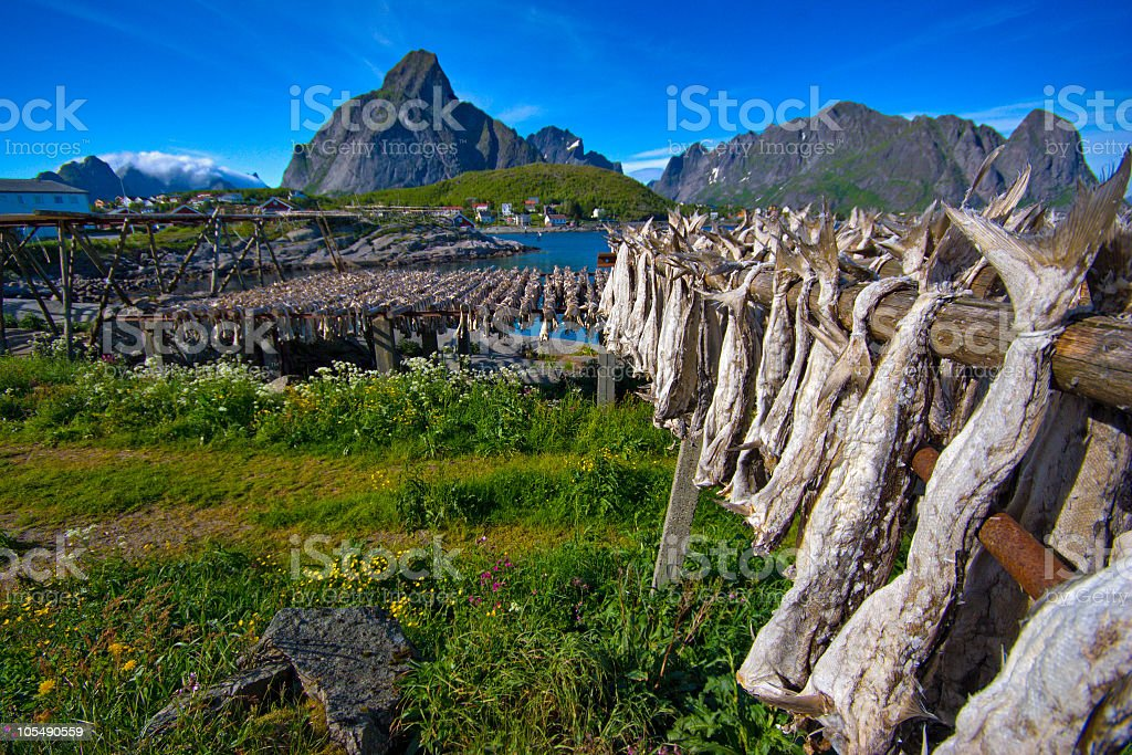 Landscape picture of Lofoten, Norway royalty-free stock photo