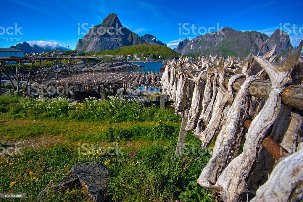 Landscape picture of Lofoten, Norway stock photo