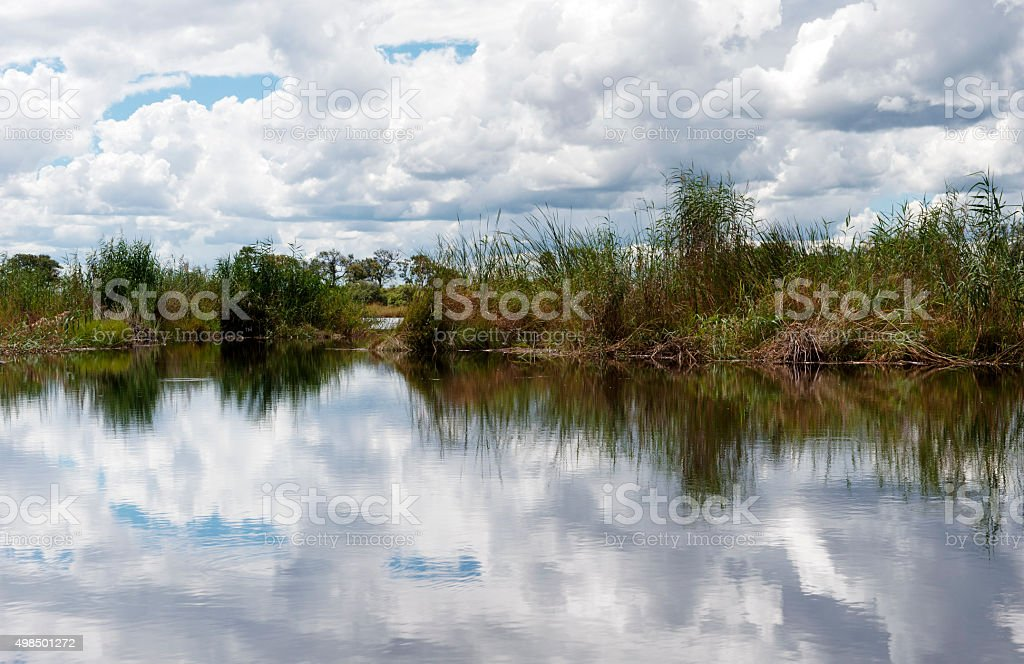 Landscape reflected in Selinda Spilway, Botswana stock photo