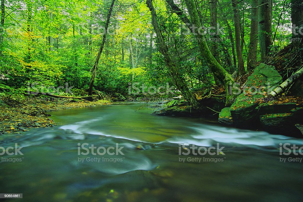 landscape river forest green royalty-free stock photo