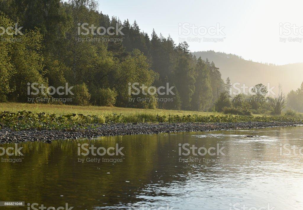 Landscape, river, forest stock photo