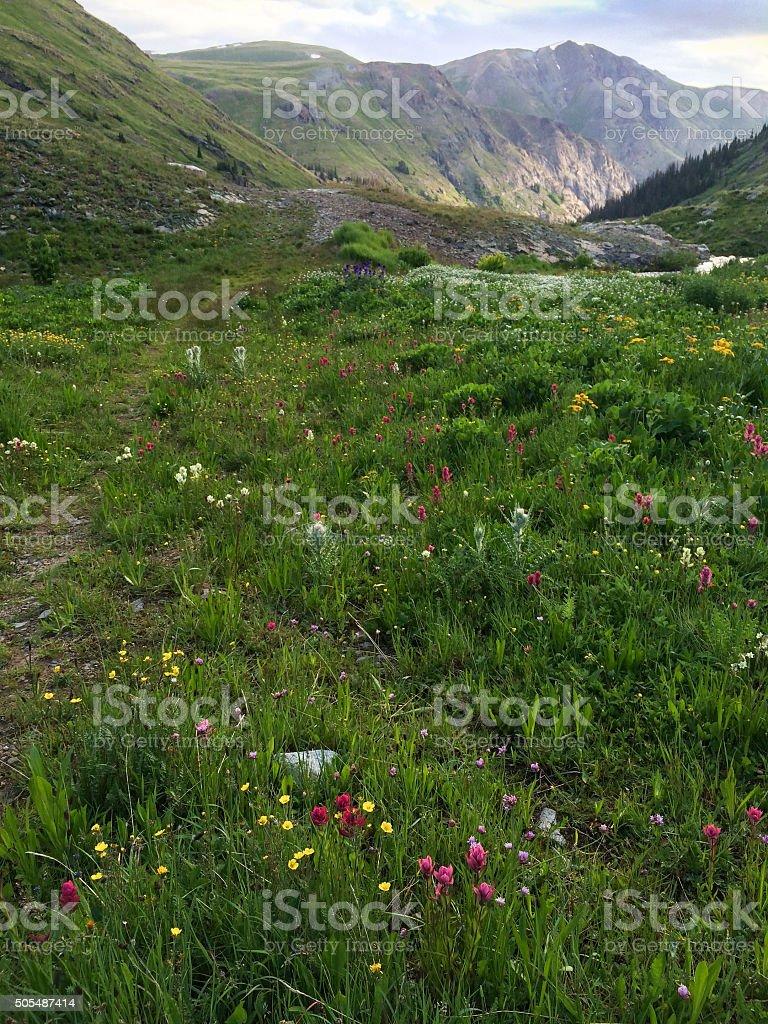 landscape rocky mountains stock photo