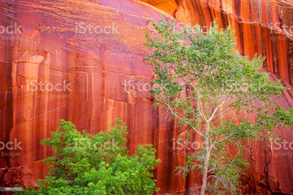 landscape sandstone stock photo