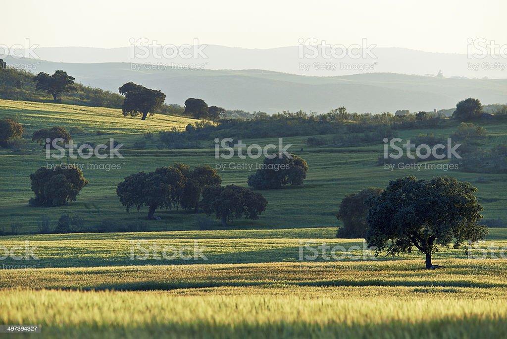Landscape scenics in Extremadura, Spain stock photo
