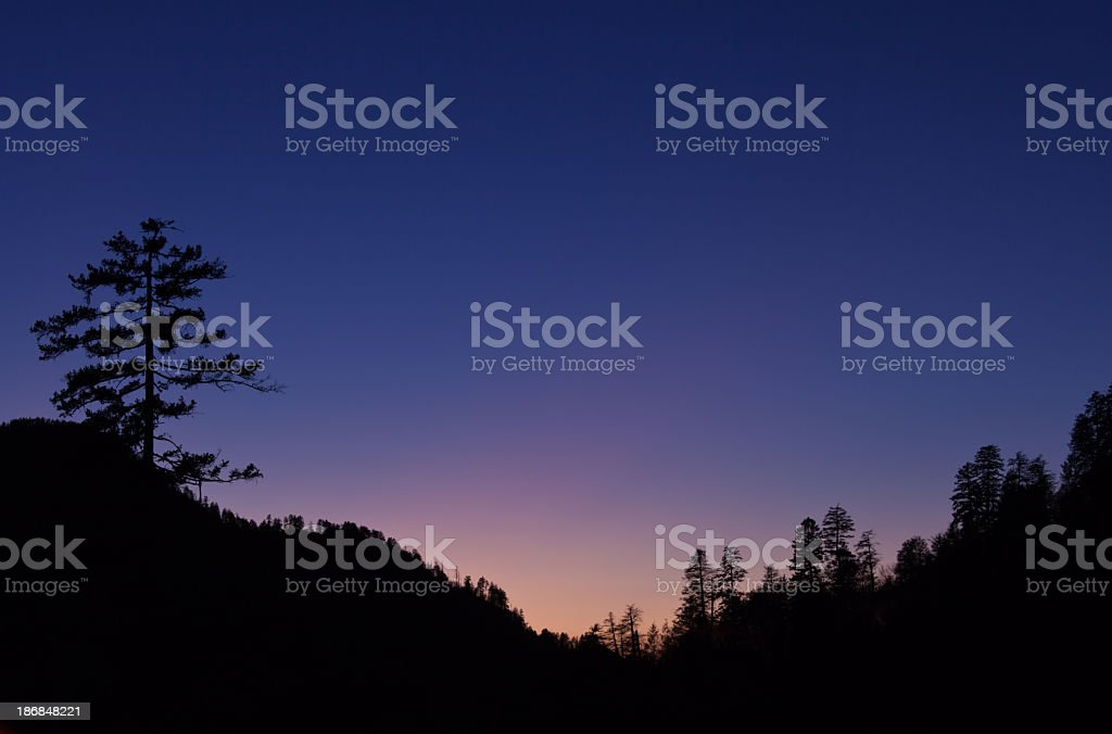 Landscape silhouettes of trees at sunset royalty-free stock photo