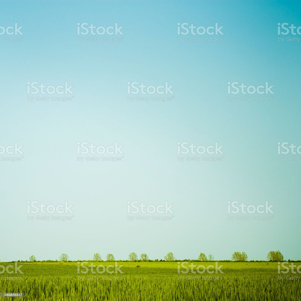 Landscape Simplicity royalty-free stock photo