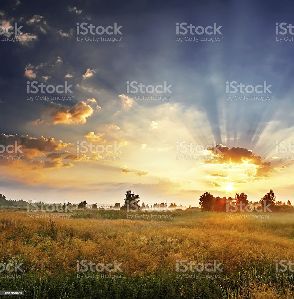 Landscape, sunny dawn in a field royalty-free stock photo