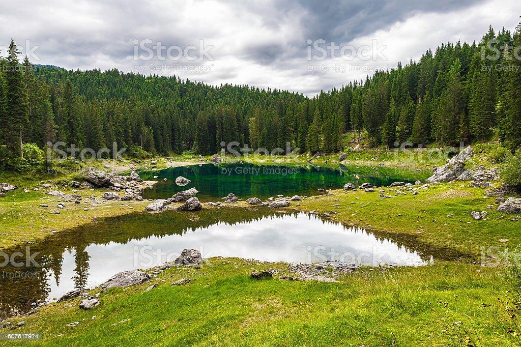 landscape the wild nature lake stock photo