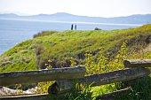 Landscape - Victoria Canada