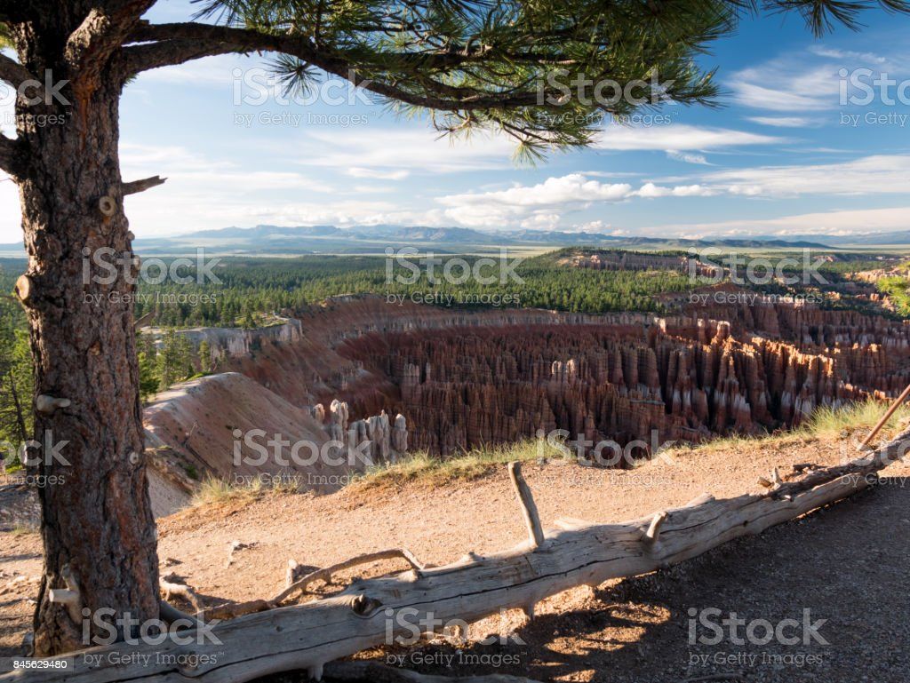Landscape view in bryce canyon during sunset, Utah, USA stock photo