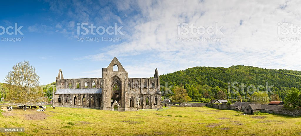 Landscape view of 16th century ancient ruins, Tintern Abbey stock photo