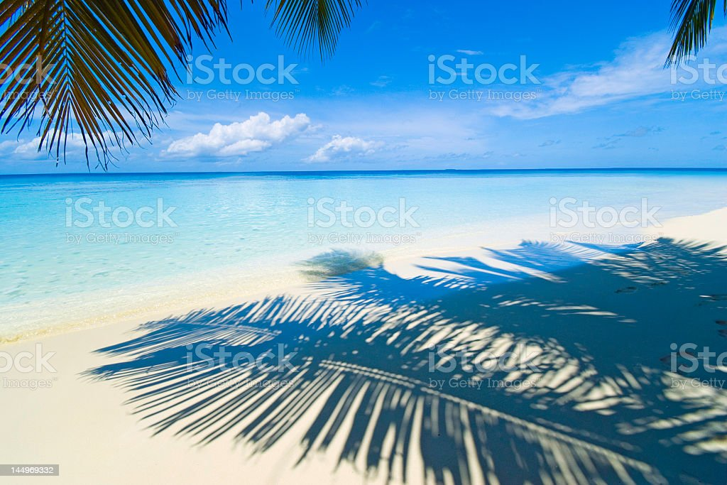 Landscape view of a tropical sea taken under palm leaves stock photo