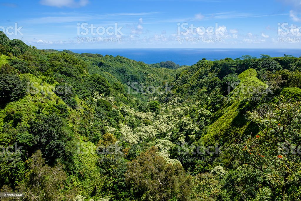 Landscape view of jungle and valley, Road to Hana, Maui stock photo