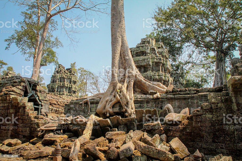 Vue sur le paysage des temples d'Angkor Wat, Siem Récolter, Cambodge photo libre de droits