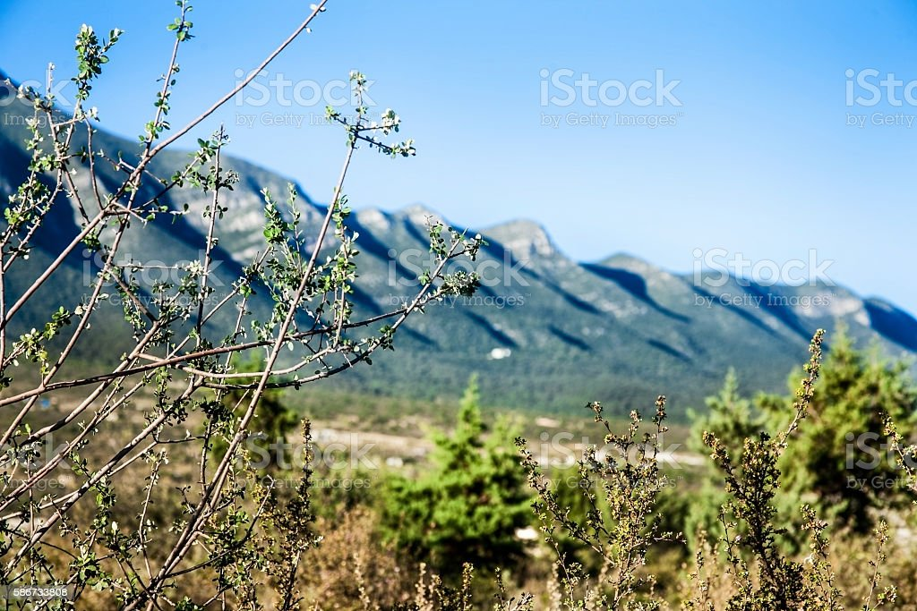 Landscape view of the Saltillo Mountains in arid Northern Mexico. stock photo