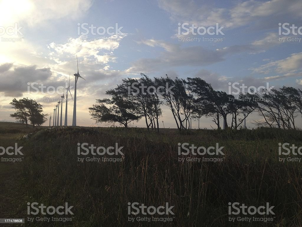 Landscape Wind Energy royalty-free stock photo