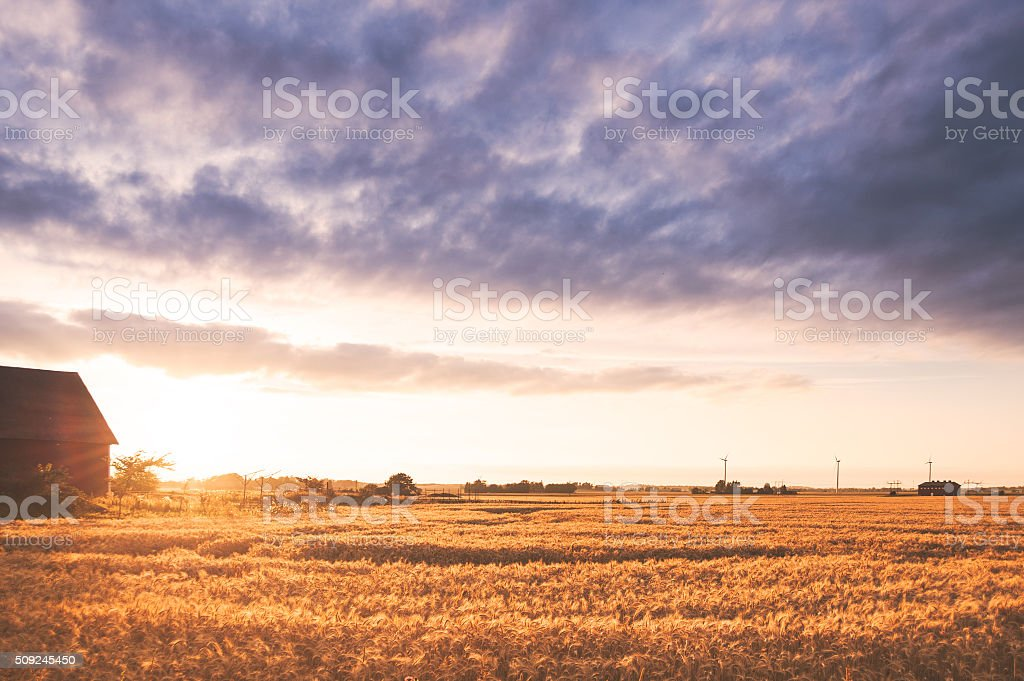 Landscape with a red barn and low sun. stock photo