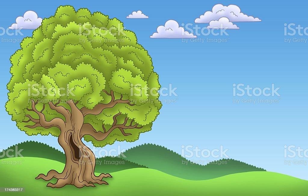 Landscape with big leafy tree stock photo