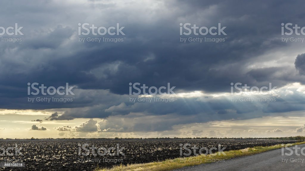 Landscape with big wheat field and road, weather change. Sun rays.