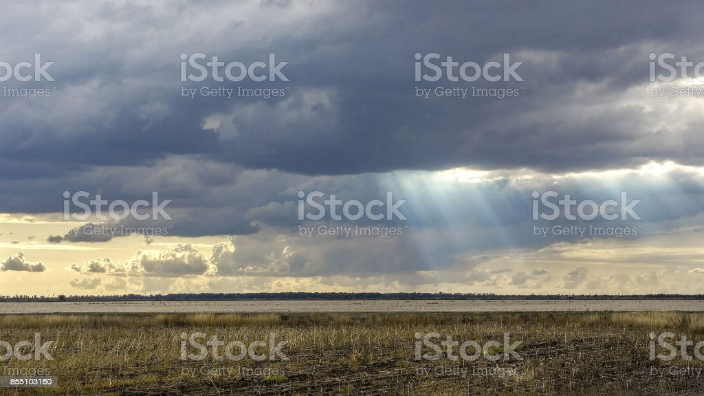 Landscape with big wheat field. weather change. Sun rays.