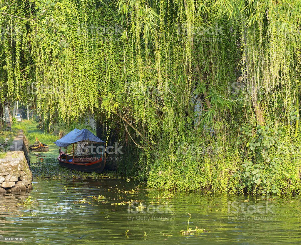 landscape with boat in kerala backwaters, India stock photo