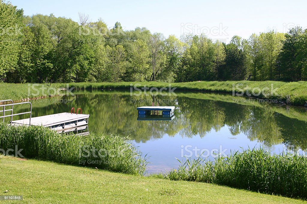Landscape with calm pond water in a sunny day royalty-free stock photo