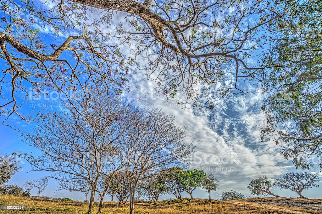 HDR Landscape with cloud formation stock photo