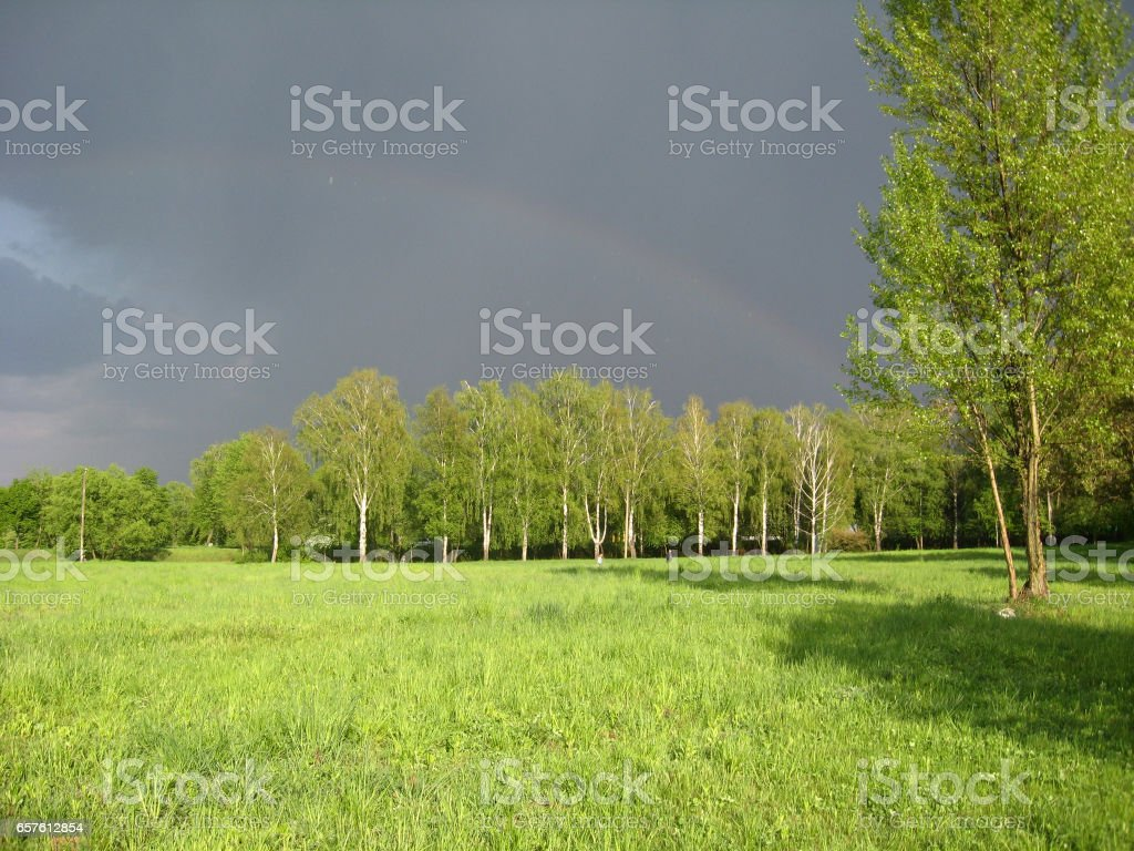 Landscape with dark rainy sky and forest stock photo