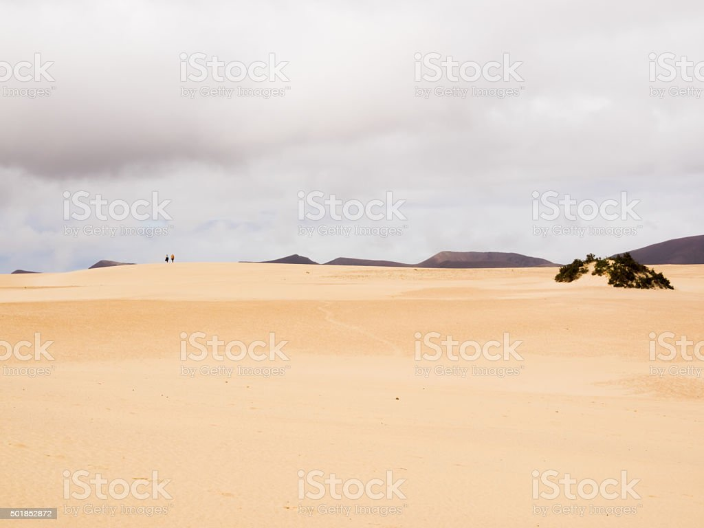 Landscape with dunes at Fuerteventura, Canary Islands, Spain stock photo
