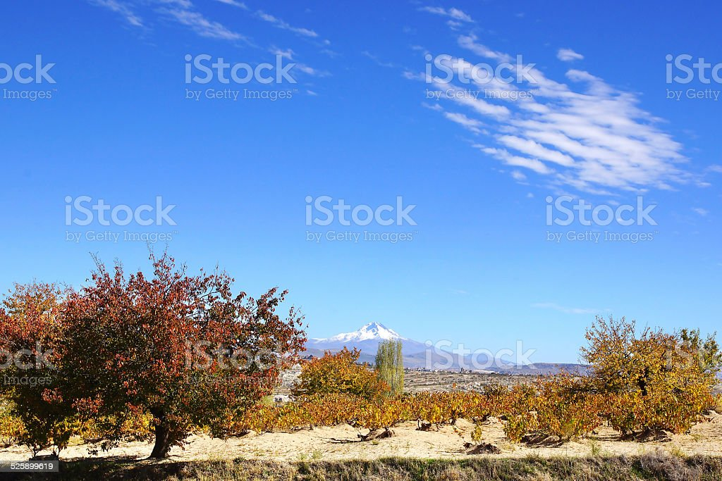 Landscape with Erciyes volcano in Cappadocia. stock photo